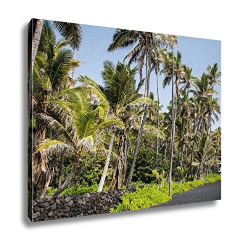 Ashley Canvas, USA Hawaii Big Island Punaluu Beach, Home Decoration Office, Ready to Hang, 20x25, AG6409351 by Ashley Canvas