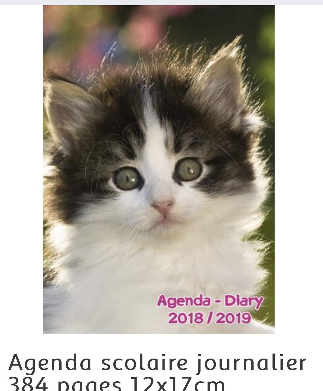 Agenda escolar (años gato Clairefontaine 2018/2019 gato 384 ...
