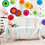 Sopeace 26 Pieces Colorful Party Decoration Set,Tissue Paper Pom Poms Flower Paper Fan and Hanging Swirl Kit for Baby Shower Birthday Decor Party Wedding Decoration Hanging Paper Fans