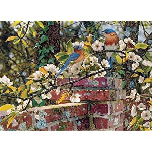 Cobblehill 80137 1000 Pc Backyard Blues Puzzle Vari
