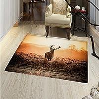 Hunting Small Rug Carpet Red Deer in The Morning Sun Wilderness Nature Scenery Countryside Rural Heathers Door mat Indoors Bathroom Mats Non Slip 2x3 Brown Orange