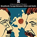 A Macat Analysis of Timothy Snyder's Bloodlands: Europe Between Hitler and Stalin Audiobook by Helen Roche Narrated by  Macat.com