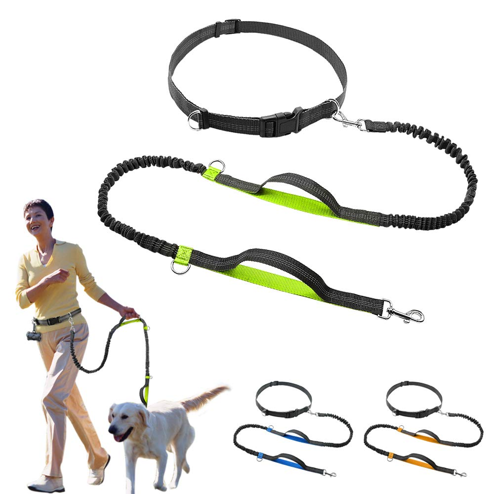 LONG-C Retractable Hands Free Dog Leash for Running Dual Handle Bungee Leash Reflective for Up to 150 lbs Large Dogs Free Bag Dispenser,Green