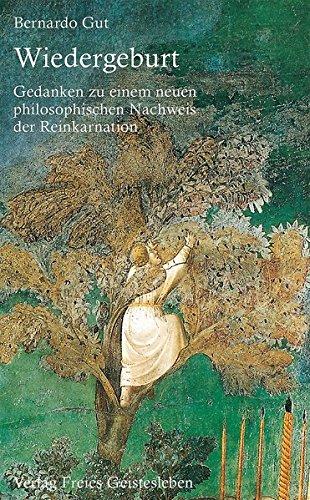 Wiedergeburt: Gedanken zu einem neuen philosophischen Nachweis der Reinkanation