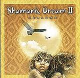 Shamanic Dream 2