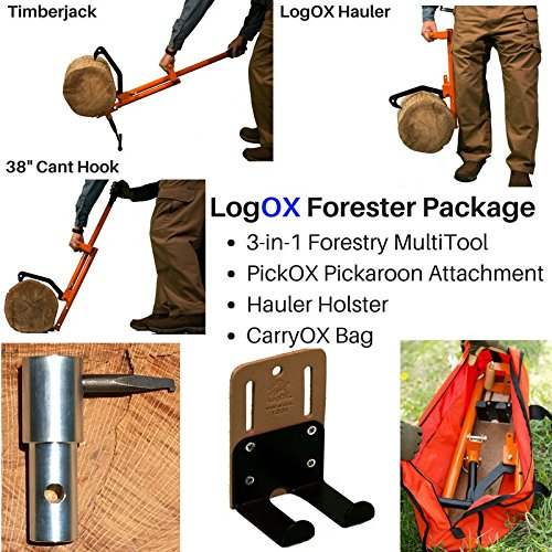 Logox Forester Package Buy Online In Oman Missing Value Products In Oman See Prices Reviews And Free Delivery In Muscat Seeb