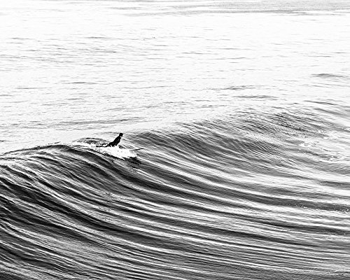 Surf art beach decor surf decor black and white fine art photography print