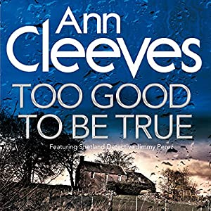 Too Good to Be True Audiobook