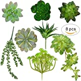 Seehoo 8Pcs Unpotted Artificial Succulents Assorted Faux Succulent Plants in Flocked Green and Green 3.8''- 5.5'' wide for Floral Arangements Craft Making