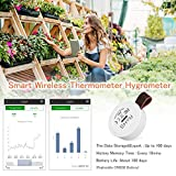 Indoor Thermometer Hygrometer Wireless