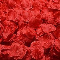 Haobase 1000pcs Rose Petals Wedding Flower Decoration (Red)