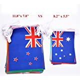 G2PLUS Extra Large Size 11.8'' x 7.8'' International String Flags Banner 60 Countries Hanging Bunting for Olympics Bar Party Events Decorations( 72 Feet )