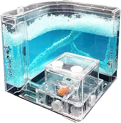 NAVAdeal Ant Farm Castle, Habitat Educational & Learning Science Kit Toy for Kids & Adults - Allows Study of The Behavior of Ants and Social ...