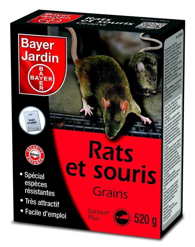 Bayer Jardin Rats et souris Grains - 520g (Ref COUM520)