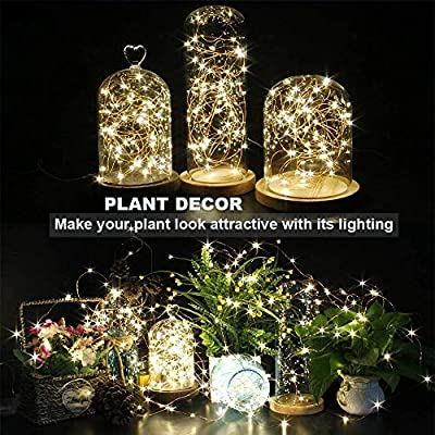 CYLAPEX Solar Powered String Lights, 33FT with 100 LEDs Copper Wire Lights, Fairy Lights, Indoor & Outdoor Waterproof Solar Decoration Lights for Garden, Patio, Home, Parties (Warm White) : Garden & Outdoor