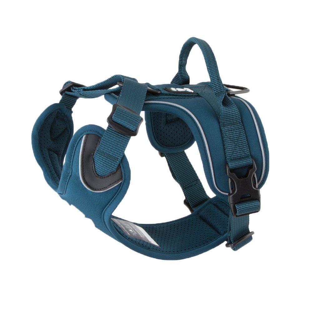 Hurtta Active Dog Harness, Juniper, 32-39 in