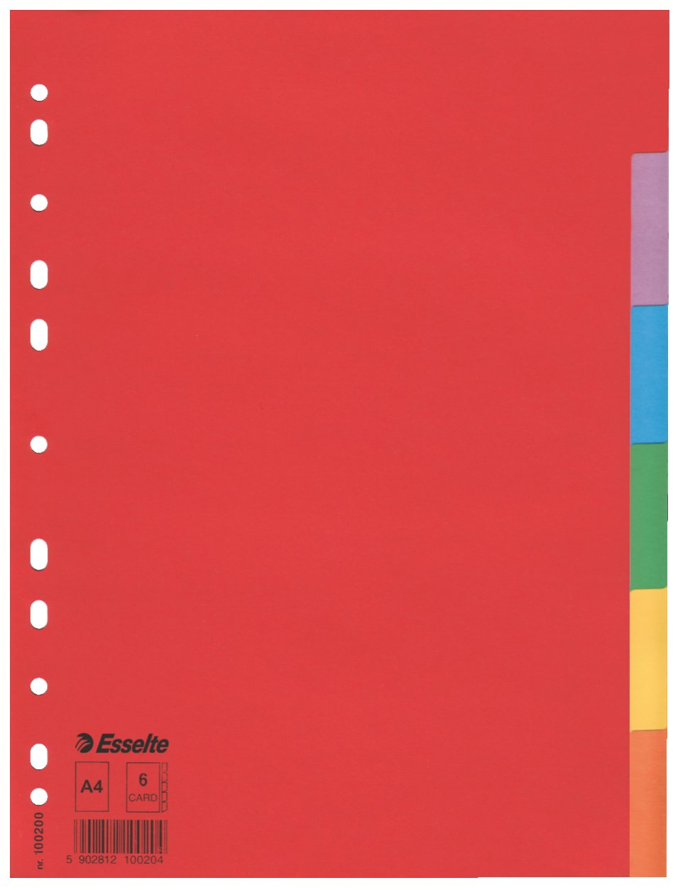 Esselte Intercalare Cartoncino riciclato Rinforzo in mylar Formato A4 100193 Multicolore
