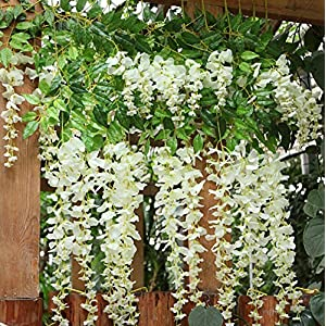 Miyaya 24 Pieces Realistic Artificial Silk Wisteria Vine Ratta Silk Hanging Flower Plant for Home Party, Wedding Decor and Other Various Events - Each White 3