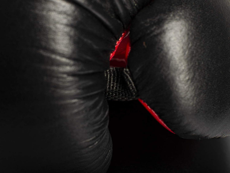 Muay Tha/ï K1 et Autres Arts Martiaux Kickboxing Paffen Sport /«Allround ECO/» Gants de Boxe en Cuir et Cuir synth/étique pour l/'entra/înement en Boxe