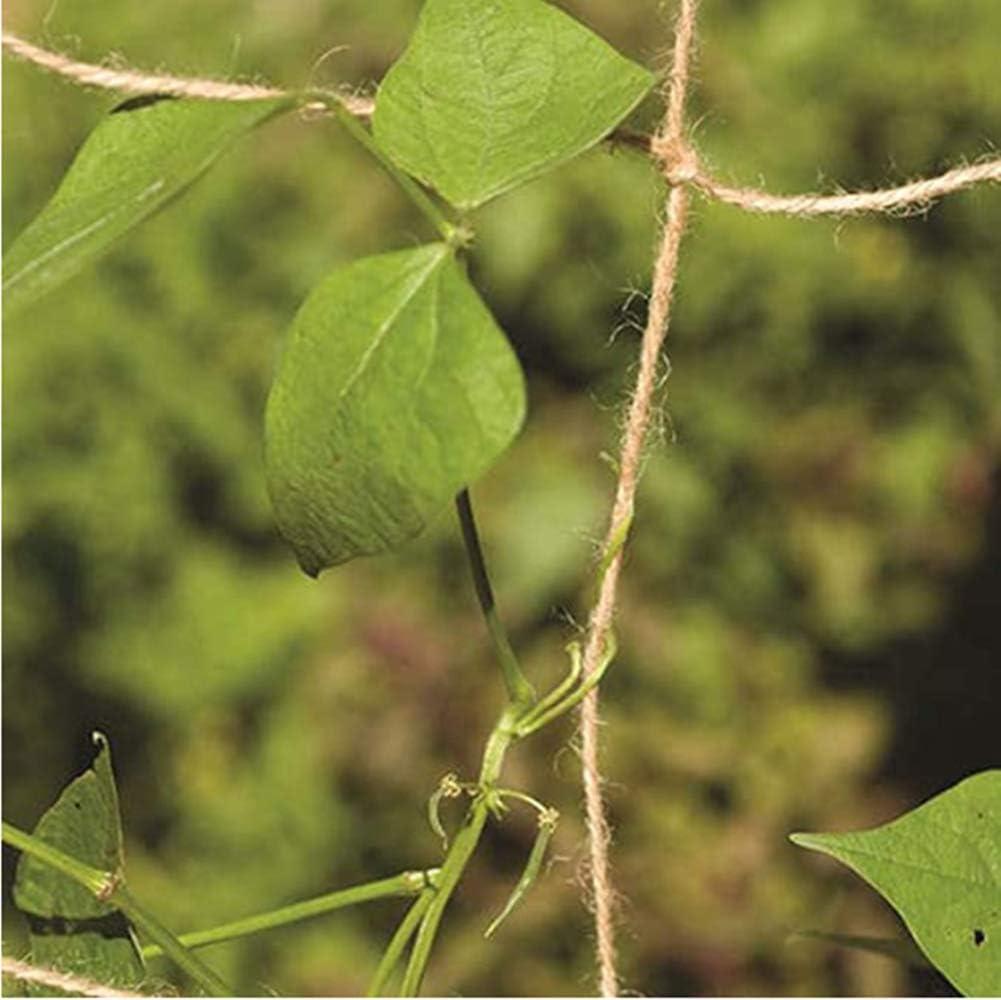 1 mx5 m N Red de soporte para plantas 100/% ecol/ógico biodegradable y compostable jard/ín natural yute enrejado