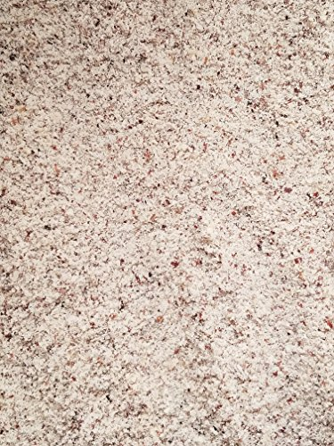 Filberts / Hazelnuts,