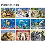 CEIEC3D Lenticular 3D Postcards Set of 9 Variety Animals Theme Greeting Cards for Preschool, Kindergarten, or Elementary School Teachers (Sea Animal)
