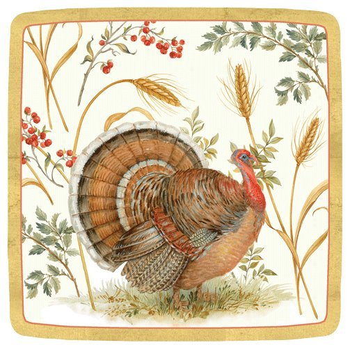 Thanksgiving Paper Plates Thanksgiving Dessert Plates Thanksgiving Table Decor Turkey Plates Pk 24 by Caspari