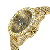 Techno KING Men's Victorian Soul of Stone Series Gold World watch (1076GM gold)