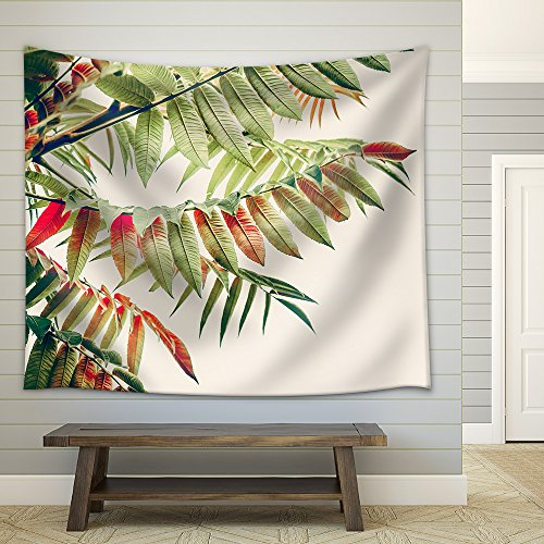Beautiful Green red Leaves Tropical Leaves on Light Background Autumn Fall Nature Fabric Wall