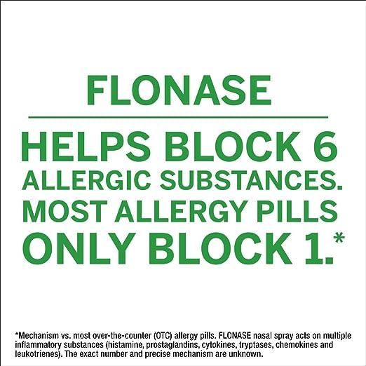 Amazon Flonase 24hr Allergy Relief Nasal Spray Full