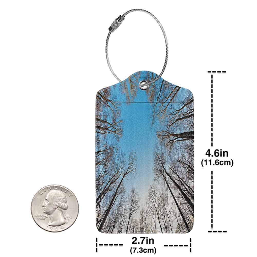 Multi-patterned luggage tag Forest Home Decor Leafless Crown of Trees with Clear Air Harmonic Branch Structure Tranquil Twig Double-sided printing Brown W2.7 x L4.6