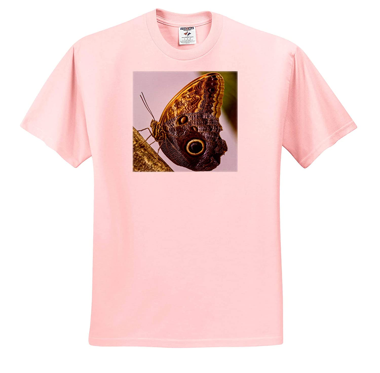 3dRose Mike Swindle Photography Animals Brown Butterfly T-Shirts