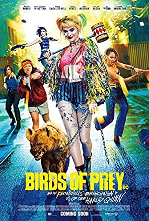 Birds Of Prey Authentic Original 27x40 Rolled Movie Poster At Amazon S Entertainment Collectibles Store
