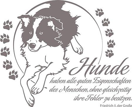 Grazdesign 640092 57 090 Wandtattoo Spruch Hunde Haben Alle Guten