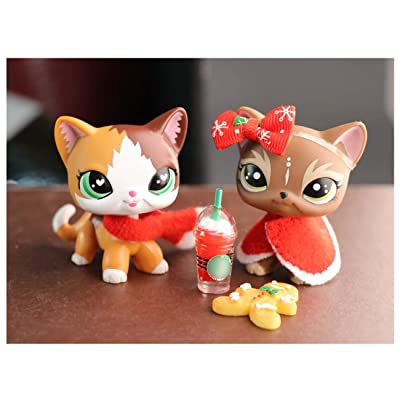 Judylovelps lps Custom Shorthair Cat Elk Meow Kittem OOAK with lps Accessories Christmas Lot Shawl Drinks Scraf Ginggerbread Man Kids Xmas Gift: Home & Kitchen