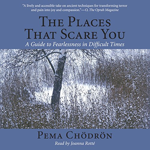 The Places That Scare You: A Guide to Fearlessness in Difficult Times Audiobook [Free Download by Trial] thumbnail