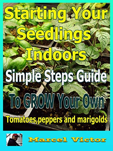(Tomatoes:How To Start  Your Seedlings Indoors, easily start your tomatoes,peppers and marigolds from seed. (grow your own tomato plants,how to plant tomatoes,cherry tomatoes,heirloom tomatoes))