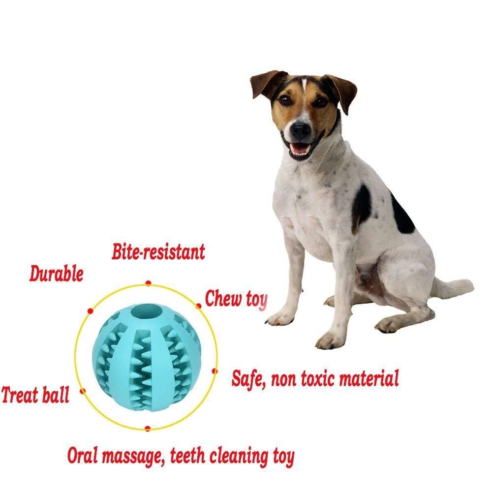 Ari/_Mao 1 St/ück Hund Welpen Spielzeug Ungiftig Gummi Dental Ball Z/ähne Reinigung Spielzeug Ausbildung Spielen Kaugummi Blau
