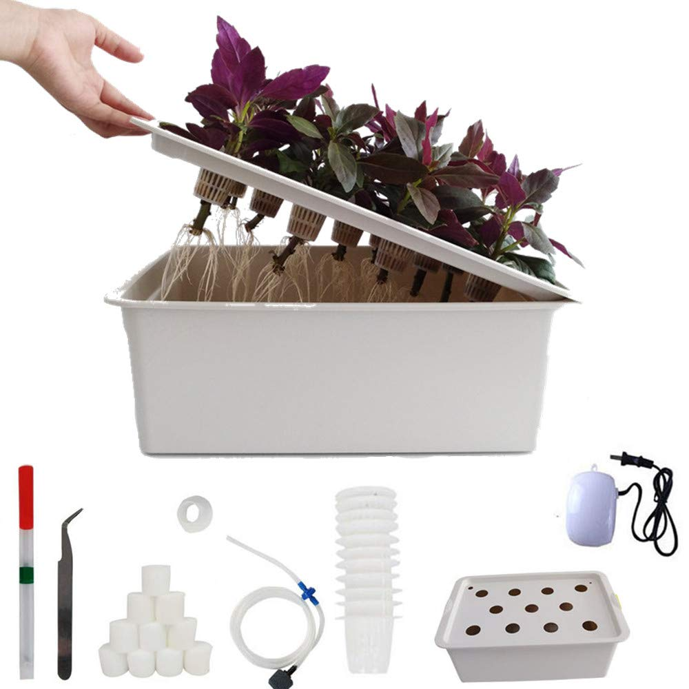 24Holes Hydroponics Grower Kit,Propagation, and Hydroponic Experiment Indoor Outdoor (Gray) by FLOURITHING (Image #3)