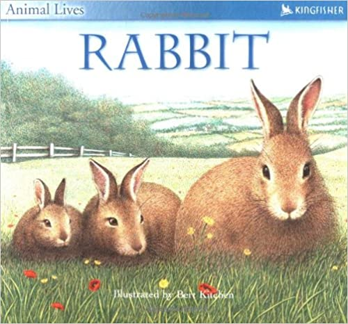 Book Rabbit (Animal Lives)