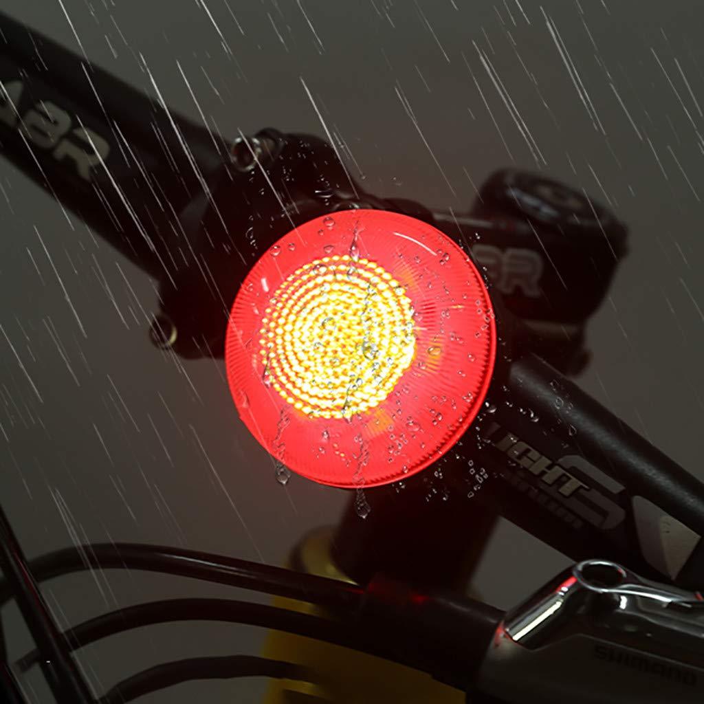 Luce Posteriore della Bicicletta Ricaricabili USB Ricaricabile Bike Rear Tail Light Bicicletta Avvertenza Safety Smart Lamp novit/à Deng Xuna Luce della Bicicletta Luci Bici Posteriore