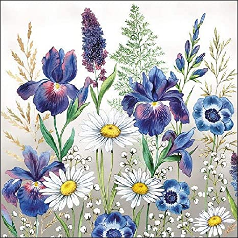 Celebrate the Home Servilletas de papel de 3 capas dise/ño floral 20 Count Nasturtium
