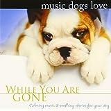 犬のための音楽 Music Dogs Love/あなたがいないときのために
