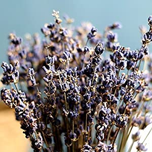 400stems Real Natural Dry Lavender bunch Dried Flower,Decorative Flowers Bouquet for Wedding Home Decorations Valentine's Day Gifts (400) 3