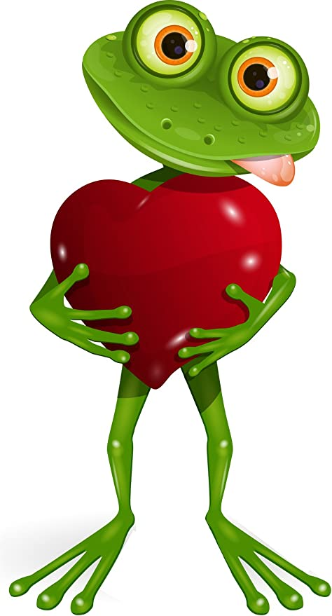 Michael Rene Pflüger Barmstedt Premium Aufkleber 8x4 2 Cm Frosch I Love You Liebe Herz Funny Cool Frog Sticker Auto Motorrad Bike Autoaufkleber Auto
