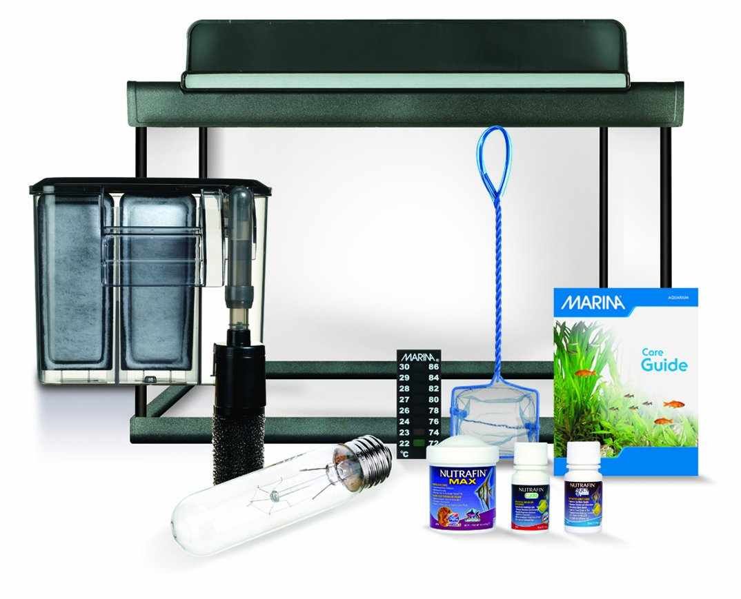 Aquarium fish tank starter kit - Marina 15250 Style 5 Glass Aquarium Kit 19 Liter 5 Us Gallon Amazon Ca Pet Supplies