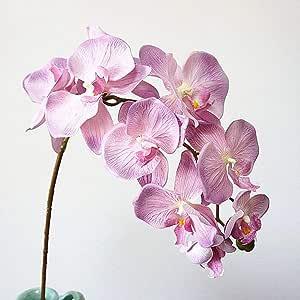 WanTo 10 Cabezas de Flores de orquídeas Artificiales