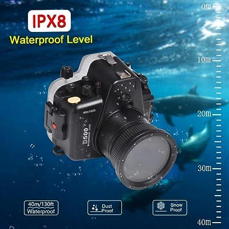 Sea Frogs - Carcasa Impermeable para cámara de Buceo Nikon D500 ...