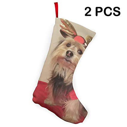 Amazon Com Liumong Cute Christmas Hat Purebred Yorkshire Terrier