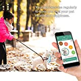 Tuokiy Pet Tracker - Thin and Lightweight Pet Activity Monitor for Dogs & Cats - Mood Detection